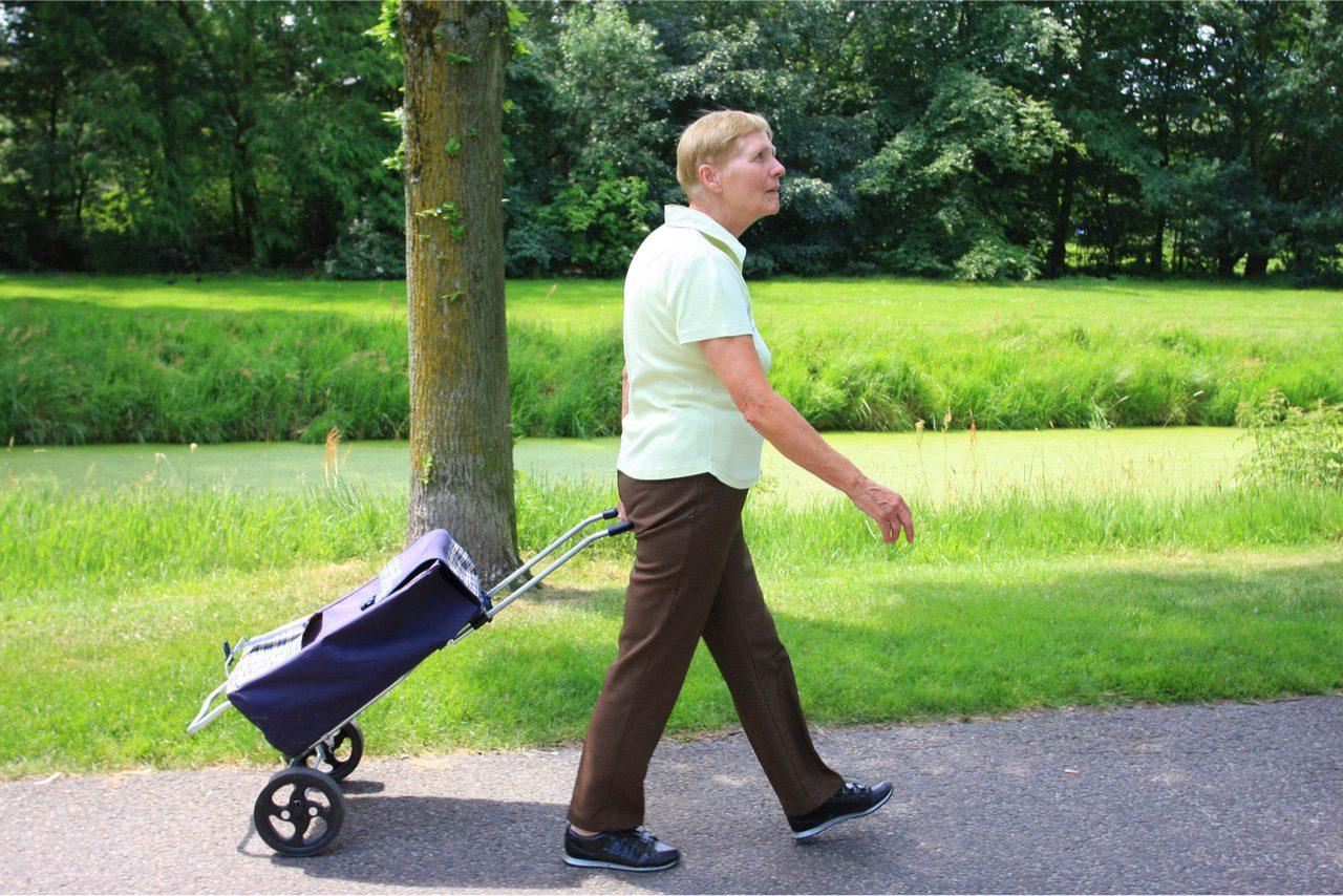 Einkaufstrolleys für ältere Mitmenschen